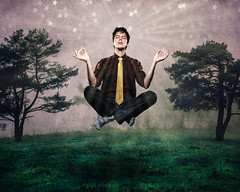 Subconscious Zen Hover (burnster7777) Tags: flickrfriday hover float zen carljung cheetahstand quickmax20 meditation