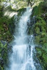 CASCADA DEL TABAYÓN (luiggiaguilar4) Tags: asturias cascada parque natural de redes agua nature waterfall