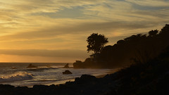 Sunset at El Pescador: Honored this image was included in the Fall 2018 edition of the Malibu Times Magazine. (remiklitsch) Tags: malibu elpescador beach nature ocean nikon remiklitsch malibutimesmagazine mymalibutimes eyesofmalibu photoessay fall2018 sunset panorama sky clouds tree waves rocks house silhouette