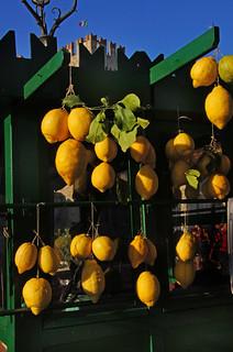 Limoni di Sirmione