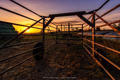 captured (fotos_by_toddi) Tags: fotosbytoddi voerde niederrhein nrw nordrhein westfalen natur nature sonne sun sunrise sony sky a7iii a7m3 a7miii tamron1530 tamron sonya7m3 sonyalpha7iii alpha7iii alpha7m3 gefangen captured