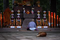 Morning Prayers In Cambodia (El-Branden Brazil) Tags: cambodia cambodian angkor angkorthom buddhist buddhism baphuon asia asian southeastasia khmer ancient sacred