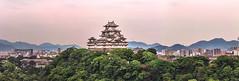 old vs new (gnseblmchen) Tags: castle view forest trees city houses town hills mountain japan japanese burg japanisch bäume wald dawn dämmerung berge bäum hdr panorama skyline himeji