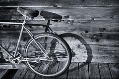 _-5.jpg (Thru Catz Eyes) Tags: blackandwhite maxwellton bicycle edna bw blackwhite