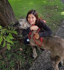 Las mejores amigas (FOTOS PARA PASAR EL RATO) Tags: perruno afagana mexicana joven sonrisa miradas perros perro dogs dog