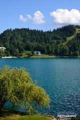 Lake Bled, Slovenia (Travel around Spain) Tags: eslovenia europa surdeeuropa balcanes yugoslavia europadeleste