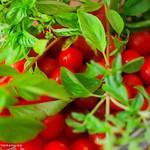 Tomates & basilic... _DSC4320 thumbnail