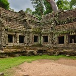 Ruins of Ta Prohm (a.k.a. jungle temple) overgrown with tree in Angkor Archeological Park near Siem Reap, Cambodia thumbnail