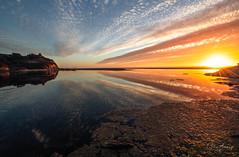 San Gregorio (sberkley123) Tags: california d850 beach nikon sunset reflections sanfrancisco sangregorio colors ocean usa coast pacific 1424mm