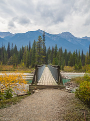 Foot Bridge (kensparksphoto) Tags: dog lake kootenay nationalpark canada canadianrockies hike trail