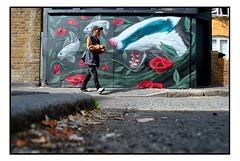 STREET ART by ROCKET 1 (StockCarPete) Tags: badger rocket1 rocketone streetart londonstreetart urbanart graffiti lowpov london uk flowers fish curb pavement