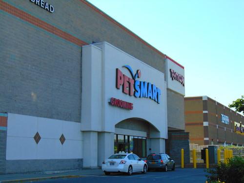 PetSmart (Albany, New York)