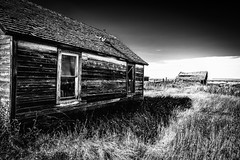 Broadview, Montana (paccode) Tags: solemn shack landscape bushes brush blackwhite quiet fence serious summer abandoned barn monochrome farm home house d850 grass creepy montana forgotten scary field broadview unitedstates us