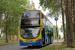 GA11557 - Rt175 - KingswoodAve - 090918 (dublinbusstuff) Tags: dublin bus route175 citywest kingswoodavenue goaheadireland 11557 wright gemini