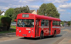 EGN 369J London Transport SMS369 AEC Swift with Park Royal body (focus- transport) Tags: epping ongar railway north weald buses coaches london transport country bus services green lineaec swift merlin reliance routemaster regent marshall park royal alexander metrocammell daimler fleetline