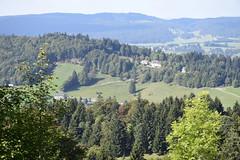 _DSC0313 Ste-Croix - Les Avattes (Marie-Annick Vigne. + 1'000'000. Merci. Thanks) Tags: randonnée rando suisse vaud jura stecroix bullet chasseron