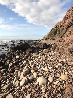 marion coastal walking trail-8