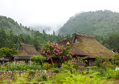 Thatched roofed houses in a traditional village, Kyoto Prefecture, Miyama, Japan (Eric Lafforgue) Tags: agriculture architecture asia buildingexterior builtstructure colorimage copyspace countryside day farm fog garden horizontal house japan japan18109 japaneseculture kitakuwadadistrict kyotoprefecture landscape miyama nopeople outdoors photography protection roof ruralscene summer thatchedroof tradition tranquility traveldestinations village jp