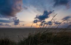 IMG_6363 (ro3duda) Tags: denmark nordsee ostsee northsea eastsea summer beach sand seaside dänemark römö romo rømø