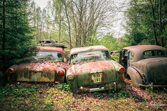 Sunshine and Chrome (MGness / urbexery.com) Tags: abandonedplaces lostplaces rotten decay lostplace abandones lost vergessen autofriedhof cars rust forgotten cargraveyard volvo car abandoned lake see