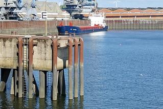 Edeka-Niederlassung im Getreidehafen Bremen