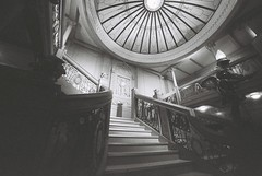 The Grand Staircase (goodfella2459) Tags: nikonf4 ilforddelta3200 35mm blackandwhite film analog titanic whitestarline sydney exhibitioncentre byronkennedyhall history grandstaircase bwfp