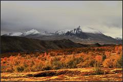 A Beautiful Morning (TrondSphoto) Tags: september sunrise snow foliage mountains morninglight dørålen dørålseter rondanenationalpark norway trondsphoto