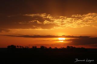 Villafafila, plaine au lever du jour | plain at sunrise