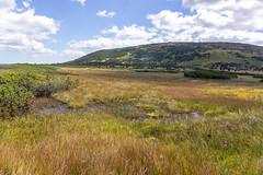 Úpské rašeliniště and Studniční hora (RunningRalph) Tags: czechrepublic poland studničníhora swamp pecpodsněžkou hradeckrálové tsjechië cz