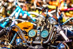 Because He Might Never See Her Again (Thomas Hawk) Tags: allbikesales america arizona phoenix rye usa unitedstates unitedstatesofamerica bicyclejunkyard bikejunkyard junkyard motorcycle motorcyclejunkyard payson us fav10 fav25 fav50