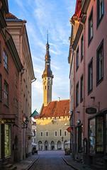 Tallinn Town Hall, 1404, in early morning (Tiigra) Tags: tallinn harjumaakond estonia ee 2018 architecture city gothic renaissance road roof spire tower townhall weathervane arch