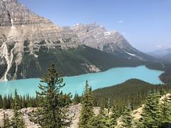 Banff, Alberta   Jasper, Alberta.  Lake Louise, Banff (jillvu) Tags: albertacanada peytolake