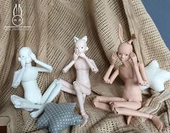 Mimo_Marina Doll (Mimo_Marina) Tags: bjd bjdboy bjddoll boy boxoppening rabbit artbjd cuteboy koreanboy kpop korean koreanstyle koreanfashion mask cat handmade handmadedoll photographer anthro h