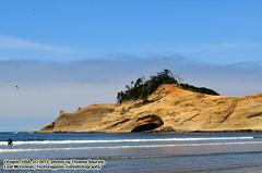080113-062 (leafworks) Tags: adventure walkabout sanddunes dunecityoregon florence oregonbeaches seascape coloradosprings co usa 01