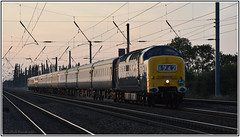 English Electric Class 55 Deltic No. D9009 'ALYCIDON' in the evening sunlight August 25th 2018 Shipton (Mark's Train pictures) Tags: deltic d9009 alycidon 55005 ecml eastcoastmainline 1z42 napier railtour retrorailtours delticretroscot delticretroscotiii delticretroscot3 passengertrain locomotive locohauledpassengertrain dieselrailtour delticrailtour class55