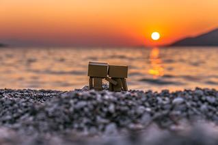 Danbos Watching the sunset