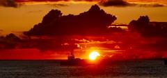 Honolulu Sunset (sembach001) Tags: panasoniczs100 honolulu hawaii kakaako sunset landscape goldenhour