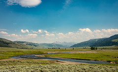 Lamar Valley (Jim Frazier) Tags: 2018 201807montana 201807yellowstone 3d3layer ariverrunsthroughit bank beautiful beauty bluesky country fabyan gkids grasses grasslands jimfraziercom july lamar landscape leadinglines mountains mountainsides nationalpark nationalparkservice nationalparks nature nps parks pastoral prairie riparian river riverbank riverfront riverside rockymountains rural rustic scenery scenic summer sunny vacation valley water winding wyoming yellowstone q3 jfpblog instagram