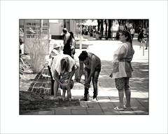 Hygienic incident in Burgas (piontrhouseselski) Tags: balcan bg burgas bw child drama city