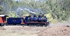 QPSR Ipswich, Trainscape (Lance #) Tags: swanbanktobundamba railway railroad train outside locomotive landscape trainscape qr qgr qgt ipswichqld 448 rva tree earth driver crew blue rvarmstrong 100yearsold smokeandsteam railwayphotography steamer