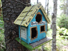 Becky's Bakery (Coastal Elite) Tags: shubiepark dartmouth novascotia urbanpark bird feeder feeders mangeoire cabane shack cute mangeoires seed seeds food birds oiseau oiseaux wildlife nature shubie park urban parc halifax regional municipality hrm fresh bread rolls cakes cookies business opening hours becky beckys bakery