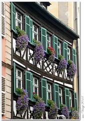 Bamberg (Mr.Vamp) Tags: bamberg bayern fränkischeschweiz oberfranken franken mrvamp vamp stadt city eos