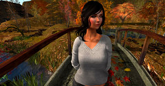 Abundant (biancamakira3) Tags: fall autumn 2018 secondlife butterflybay witches ghosts cemetery halloween spiders leaves abundant crisp unpredictable mysterious haunted spooky scary nature tree grass bridge water