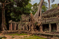 Preah Khan – Temple (Thomas Mülchi) Tags: preahkhan angkor siemreap cambodia 2018 siemreapprovince jungle forst tree trees naturetakeover krongsiemreap kh