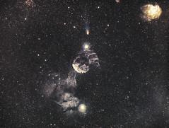 21P Bi-Color LHO in Gemini (Joel Quimpo) Tags: 21p comet lho astrophotography gemini jellyfish