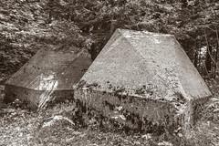 Toblerones (axel274) Tags: d3400 jura lisle mollendruz montricher nikon romainmôtier schweiz suisse switzerland vaud