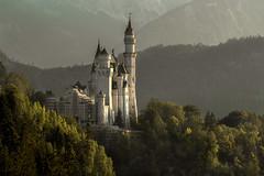 The castle of all castles - Das Schloß der Schlösser (ralfkai41) Tags: ngc bäume castle neuschwanstein architektur alpen trees woods forest architecture mountains berge outdoor bavaria bayern schlos wald