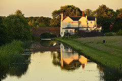 The Fingerpost Pub, Pelsall 22/06/2018 (Gary S. Crutchley) Tags: golden sunset pelsall nest common fingerpost pub wyrley and essington canal uk great britain england united kingdom urban town townscape walsall walsallflickr walsallweb black country blackcountry staffordshire staffs west midlands westmidlands nikon d800 raw summer evening