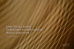 263/365   Daily Haiku: Brainless (James Milstid) Tags: dailyhaiku haikuaday haiku haiga poetry jemhaiku whereismymuse