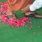 20180704 - Visit of Elder Swamiji (GLB) (5)